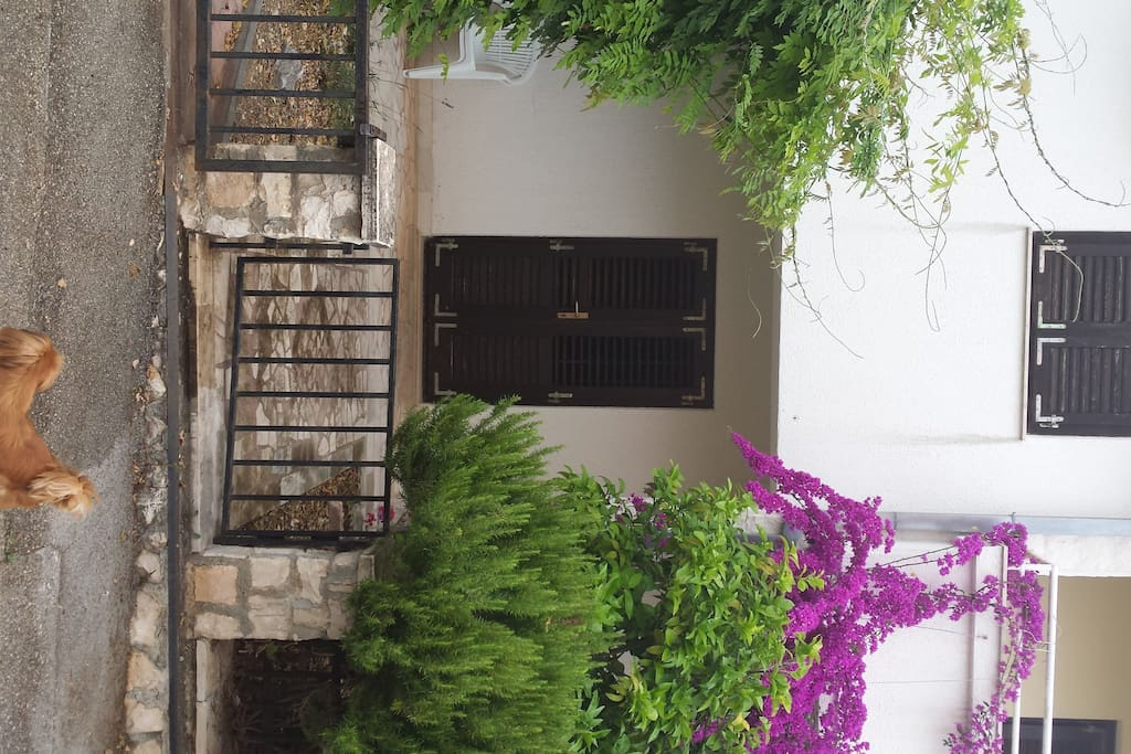Private courtyard and entrance. Great for kids to play or pets!