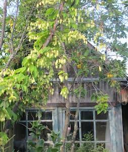 Крошечный домик на садовом участке! - Novosibirsk