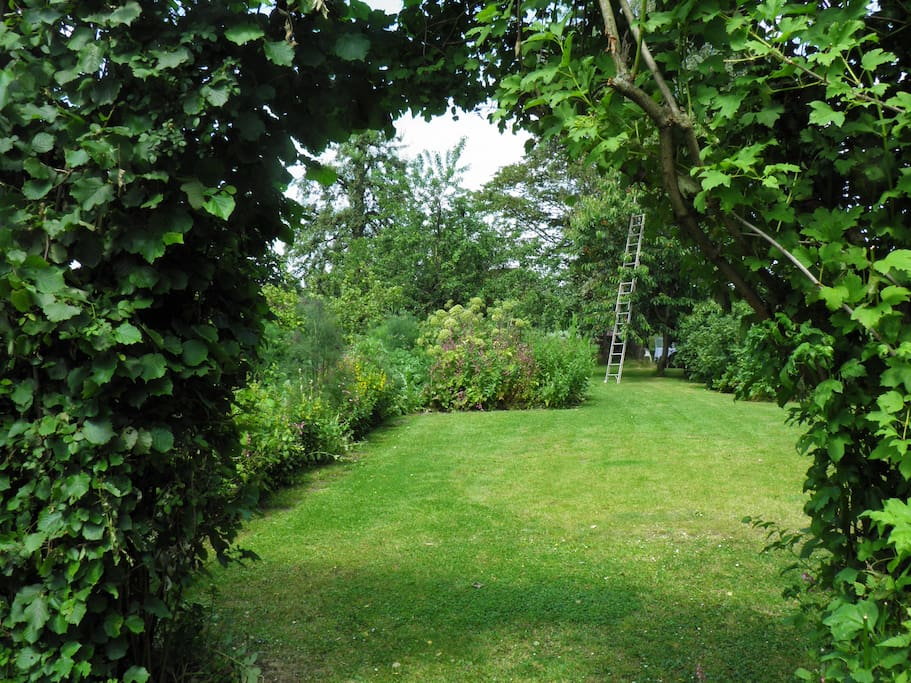 uitzicht op de tuin vanaf het terras van het huuske