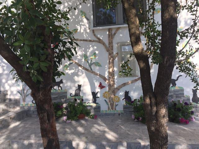 1-й этаж с террасой и виноградником