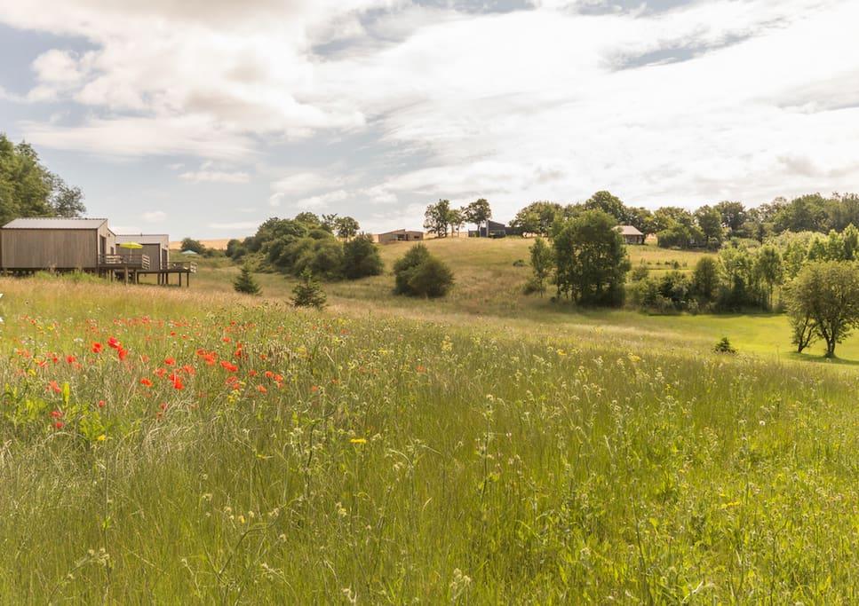 Espaces verts aux alentours et à quelques mètres le golf