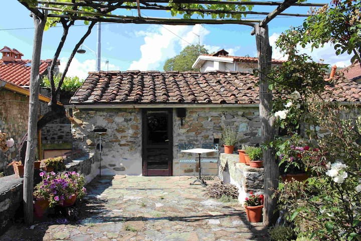 Ancient holiday house in Tuscnay - Luscignano - Hus