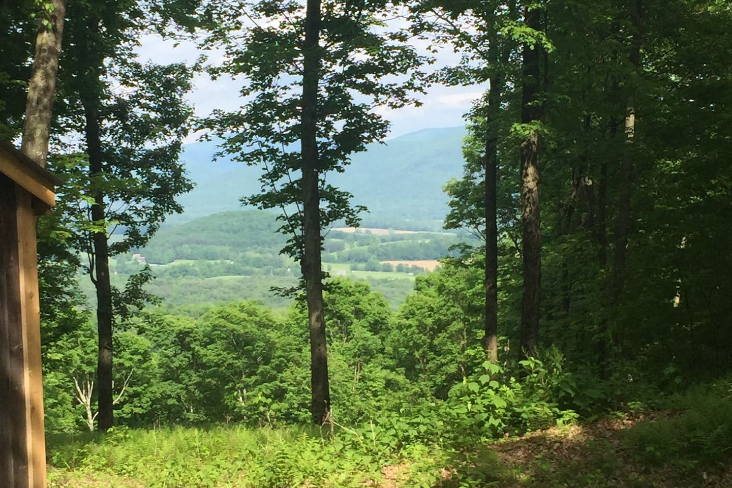 100 Acres with cabin on Mountaintop viewing the Green Mountains! Breathtaking views of the Battenkill Valley, see the picturesque farmland while relaxing after a days hiking.  Deer, rabbit, squirrels, chipmunks, raptors, song birds, diverse fauna...