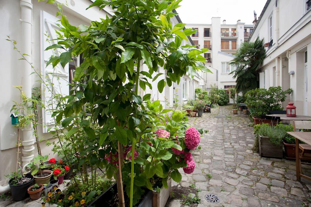 une cour calme et charmante en plein coeur de Paris !