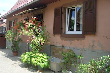 Maison pour vac ou séjour en Alsace - Hochfelden