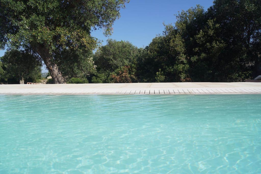 Infinity Pool - Villa Side