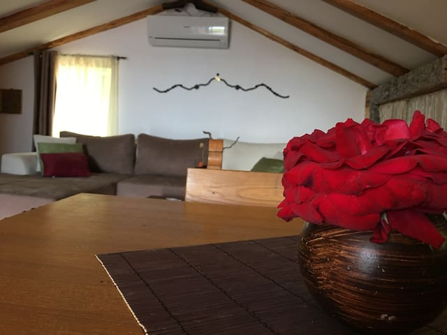 Rose studio apartment - Vrataruša