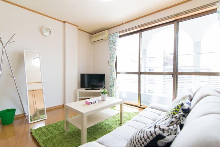 Easy Access Tokyo,Asakusa,Narita/FreePocketWifi㉘ - Matsudo-shi - Appartement