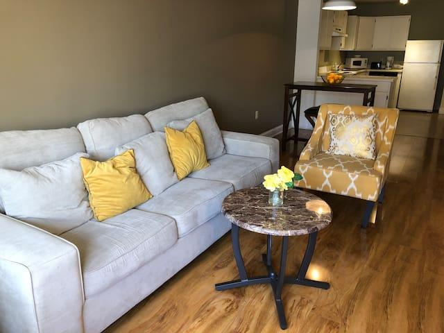 Modern 1 Bedroom in Downtown Memphis