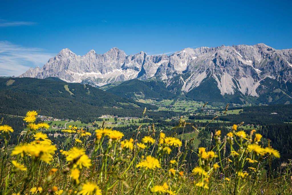 View of Ramsau am Dachstein in summer