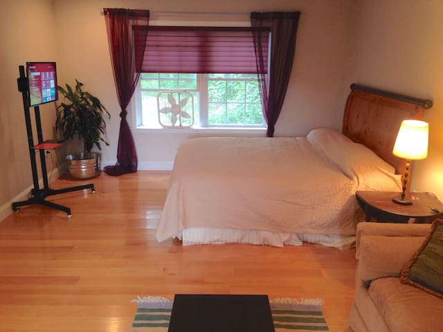 Nice Apartment Sized Room - Mohegan Lake - House