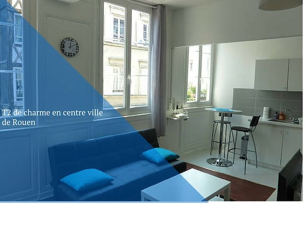 Charming apartment  city center  - Rouen