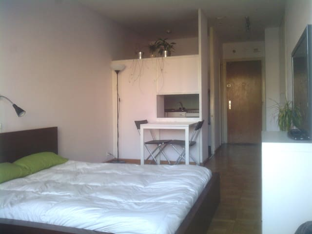 Nice cosy studio in city center - Ginebra - Wohnung