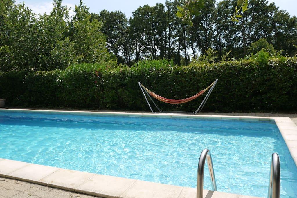 Plongez dans la piscine 5m*11m