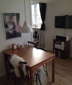 Small cozy apartment in Aalborg C  - Aalborg