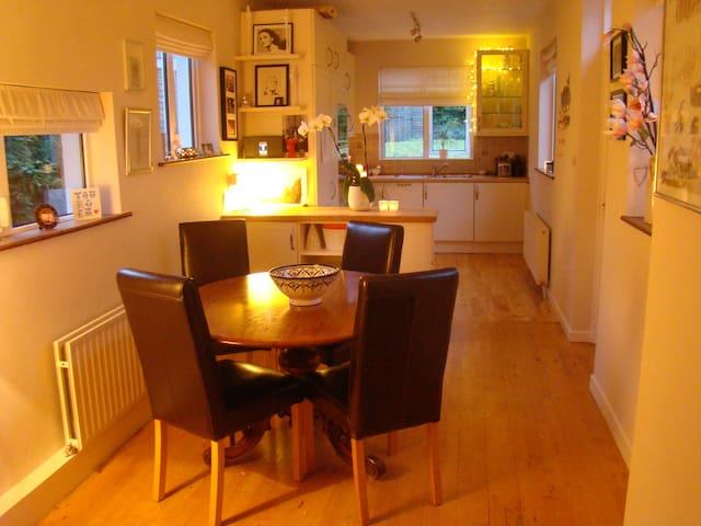 Quiet house, excellent location - Sandymount - Bed & Breakfast