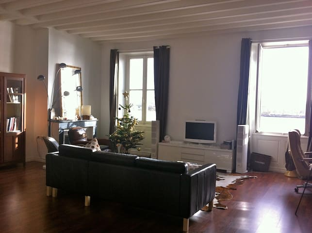 Bright apartment. Waterfront Bordeaux Chartrons.