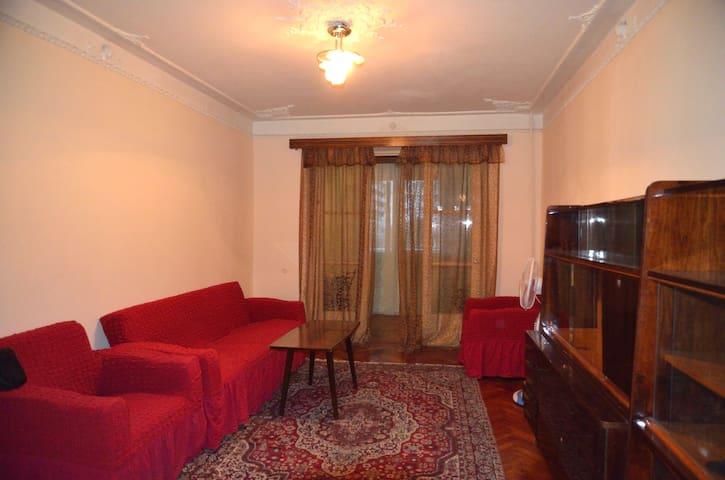 One bedroom flat near the seaside  - Batumi - Appartement