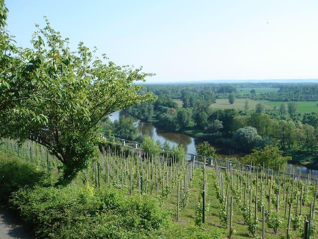 Nad soutokem řek Labe a Vltavy - Melnik