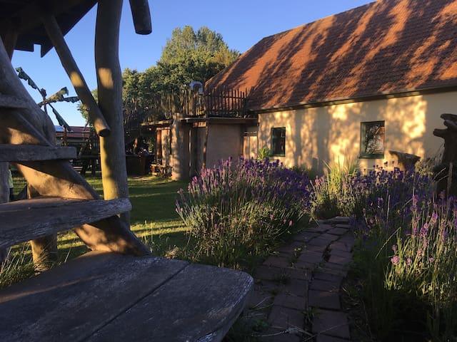 Herrlich duftender Lavendel umspielt den Aufgang zum Baumhaus