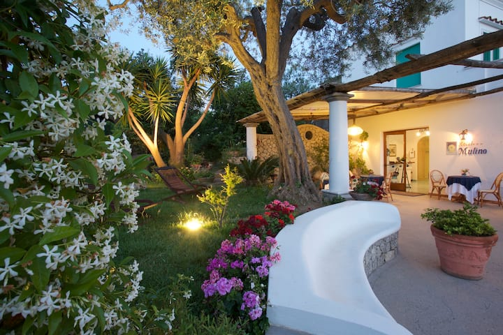 Al Mulino Anacapri - your home in Capri