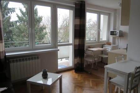 charming and calm studio - Łódź - Apartmen