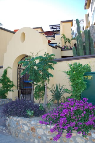 Beautiful landscaping, ironwork, and fountains all add to the beauty of Casa Amistad.