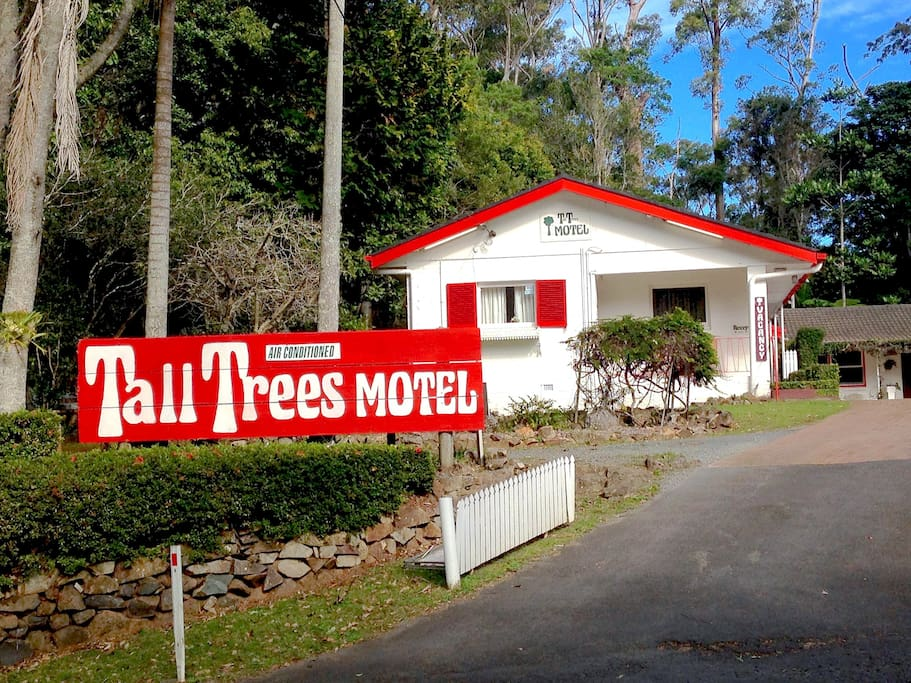 Tall Trees Motel Entrance