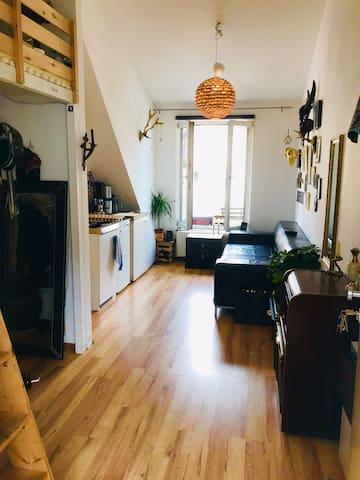 Wohnraum links Hochbett und kochecke