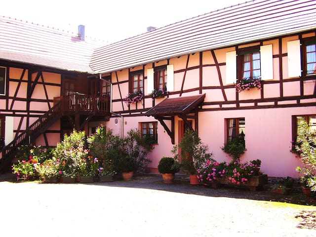 Gîte Duplex Centre Alsace 4 p. - Huttenheim - Huis