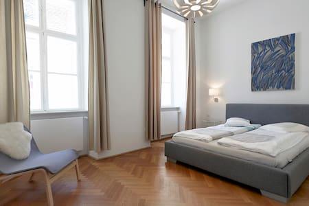 Magnificent Apartment in CityCenter - Wien - Wohnung