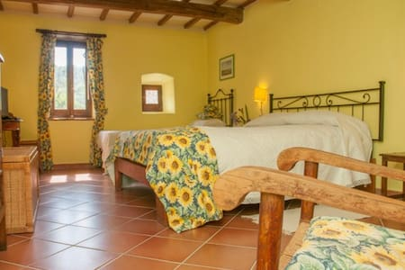 large, bright room; pool ;garden - Piegaro-collebaldo - Bed & Breakfast