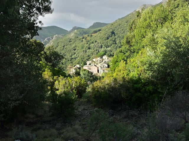 Studio Cap Corse - Rogliano - House