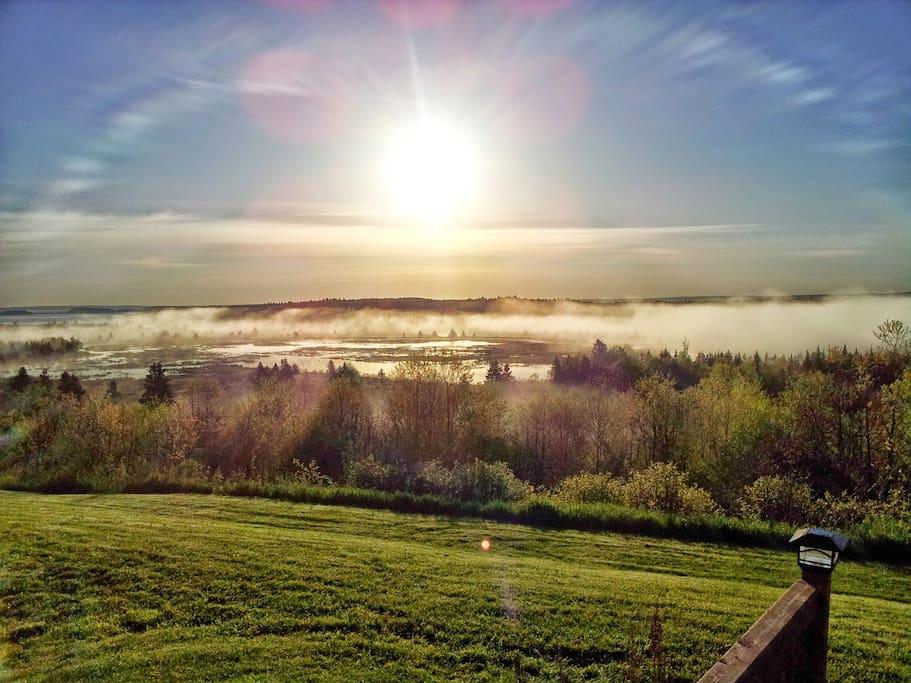 Good morning FundyRidge!