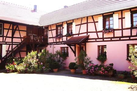 Gite centre Alsace 3p. - Huttenheim - Byt