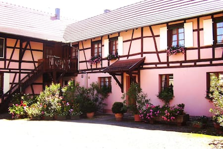 Gite centre Alsace 3p. - Huttenheim