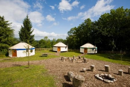 Haytor - Large village Yurt 01 - Newton Abbot