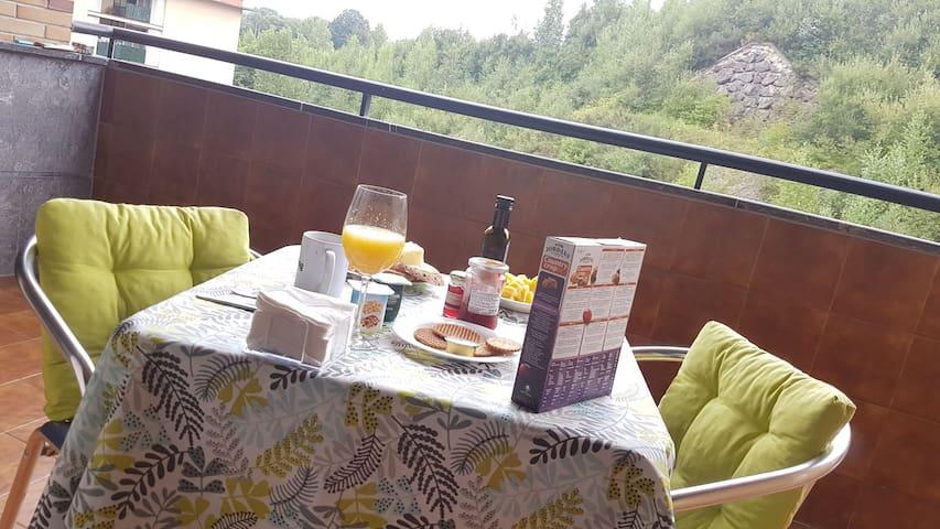Hab. con terraza y baño. 1p. Fanderia