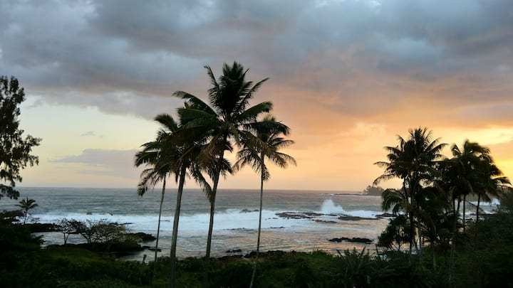 Oceanside Delight ! Beachfront, near downtown Hilo
