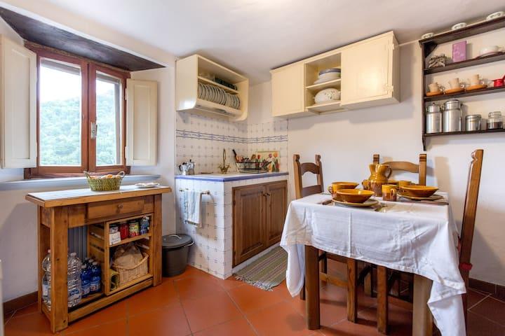 La Casa del Bosco - Torri Sambuca Pistoiese - House