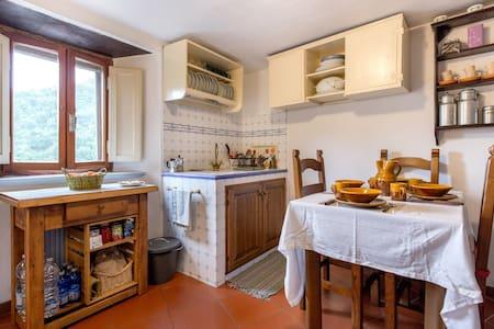 La Casa del Bosco - Torri Sambuca Pistoiese - Hus