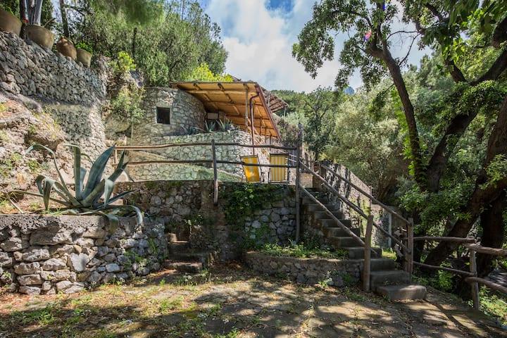 Villa Torrette