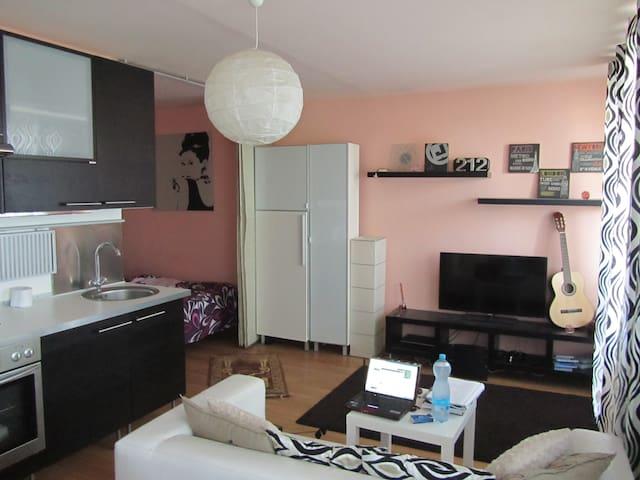 Sunny 1r flat with beautiful view - Praha - Apartment