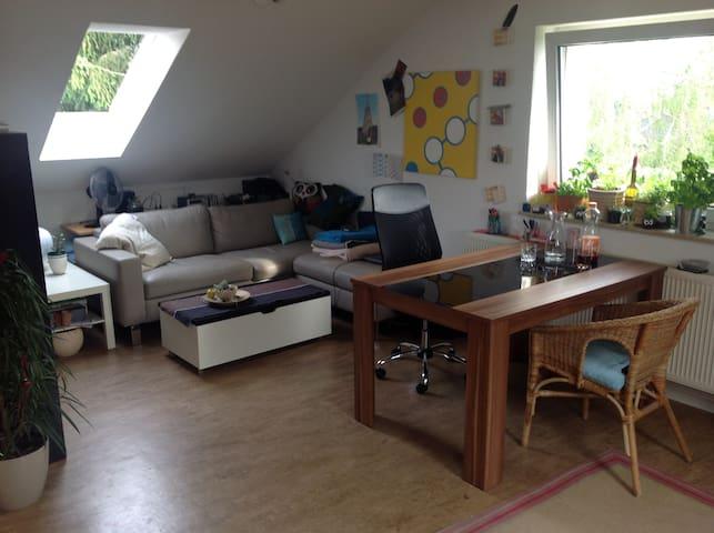 Schöne, helle 2-Zimmer-Wohnung - Kassel - Apartemen