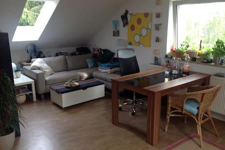Schöne, helle 2-Zimmer-Wohnung