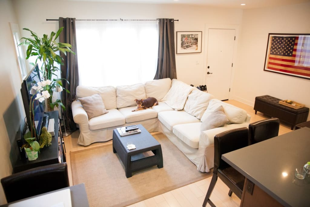 Sit down and enjoy a movie or read a book in our gorgeously lit living room
