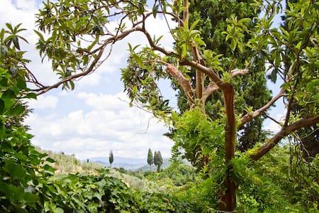 Tuscan Sun Villa in Florence - Florenz - Villa