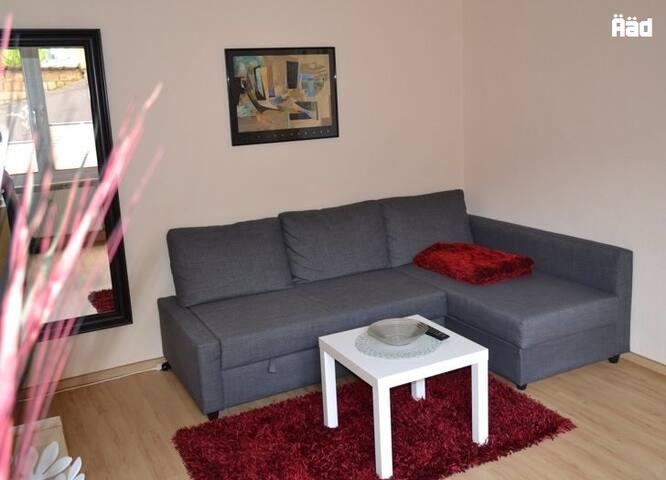 Bequeme Couch oder 1,4 m breites, sehr bequemes Bett.