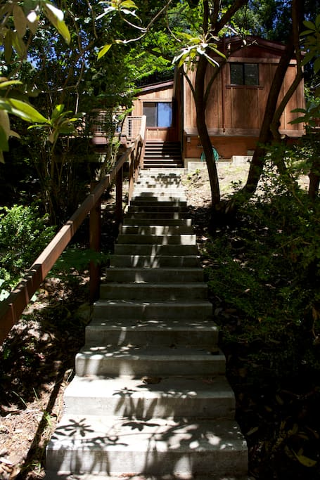 The stairs leading up to the entrance.