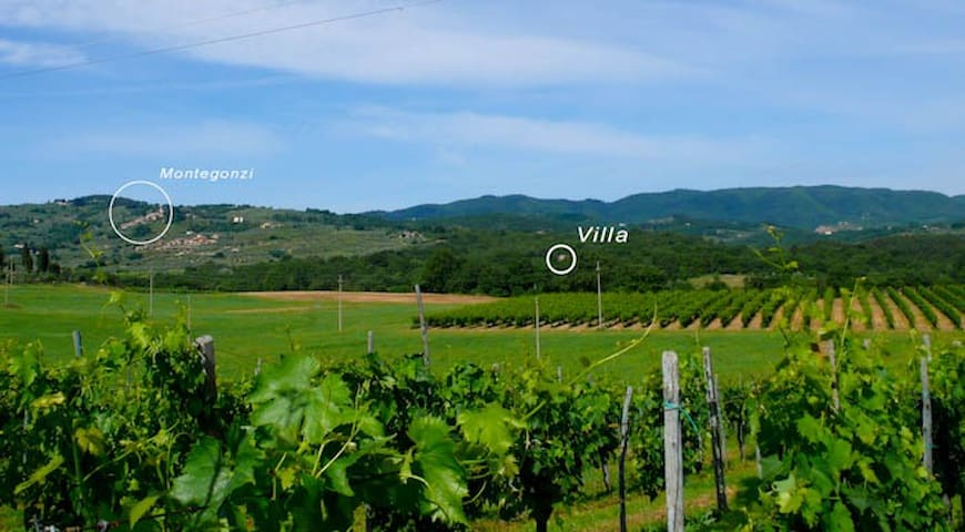 Only 1.5 Km (0.9 miles) there is Montegonzi, a nice (not touristic) small village dating back to 1191